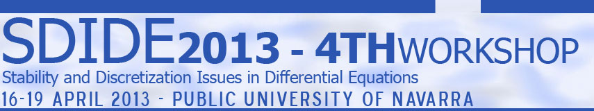 Stability and Discretization Issues in Differential Equations. 4th Workshop. 2013